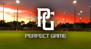 Scout/Field Manager | Perfect Game USA